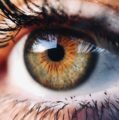 Chinese nanotech eye could offer night vision
