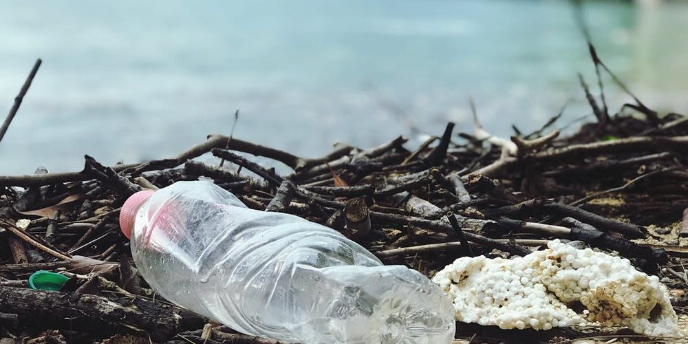 China offers plastic-eating bacteria as waste solution for oceans